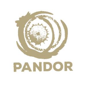 Pandor Dagbegeleiding